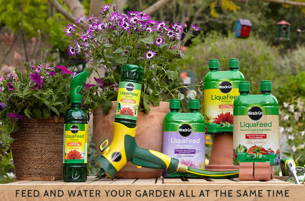Feed and Water Your Garden All At The Same Time