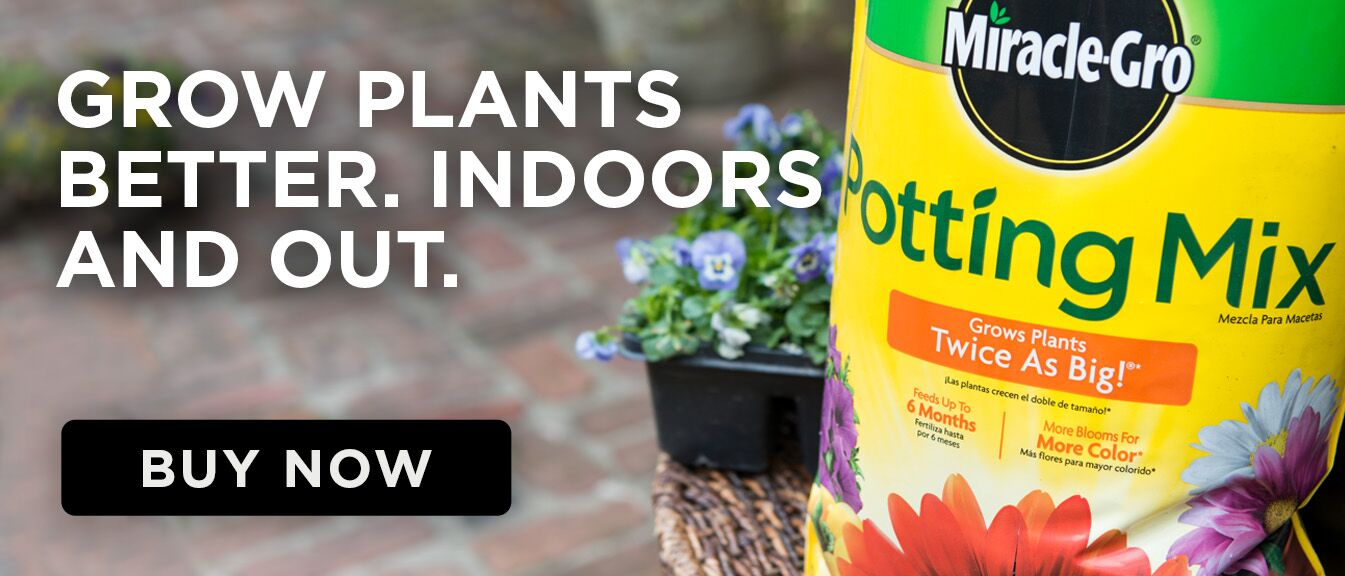 Bag of potting mix with caption- Grow Plants Better. Indoors and Out