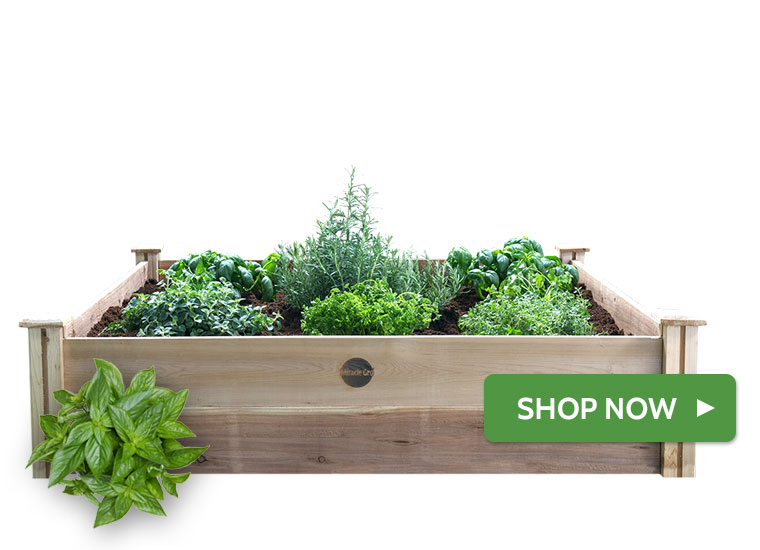 Raised Fresh & Handy Herb Garden