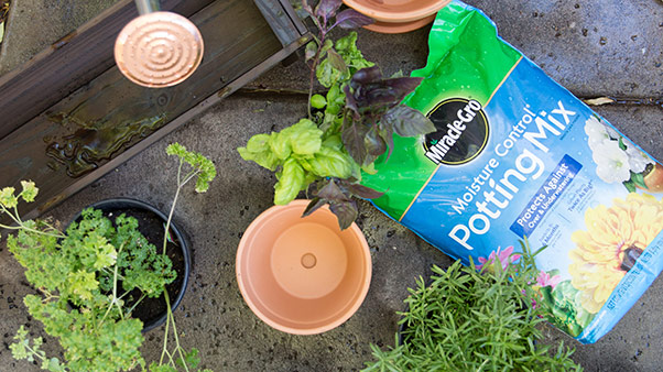 Potting Mix and Containers