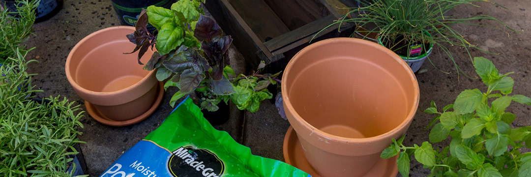 & Best Soil to Use in Containers and Raised Beds | Miracle-Gro
