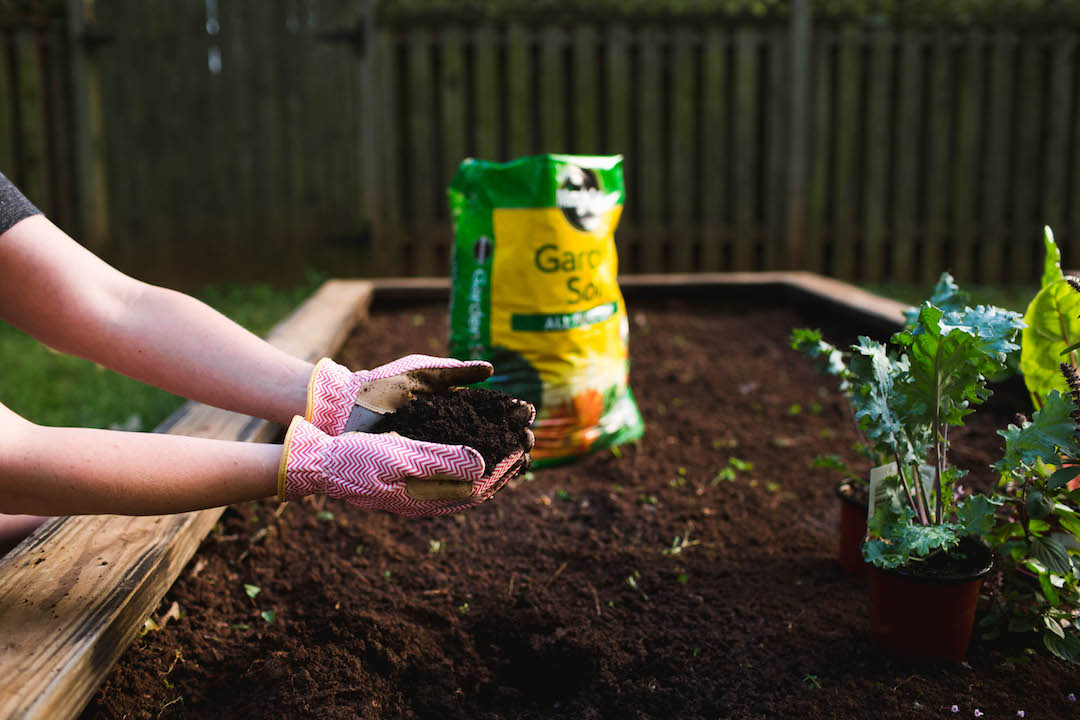 To improve the soil in garden beds, incorporate 3 inches of Miracle-Gro® All Purpose Garden Soil into the top 6 to 8 inches of existing soil.
