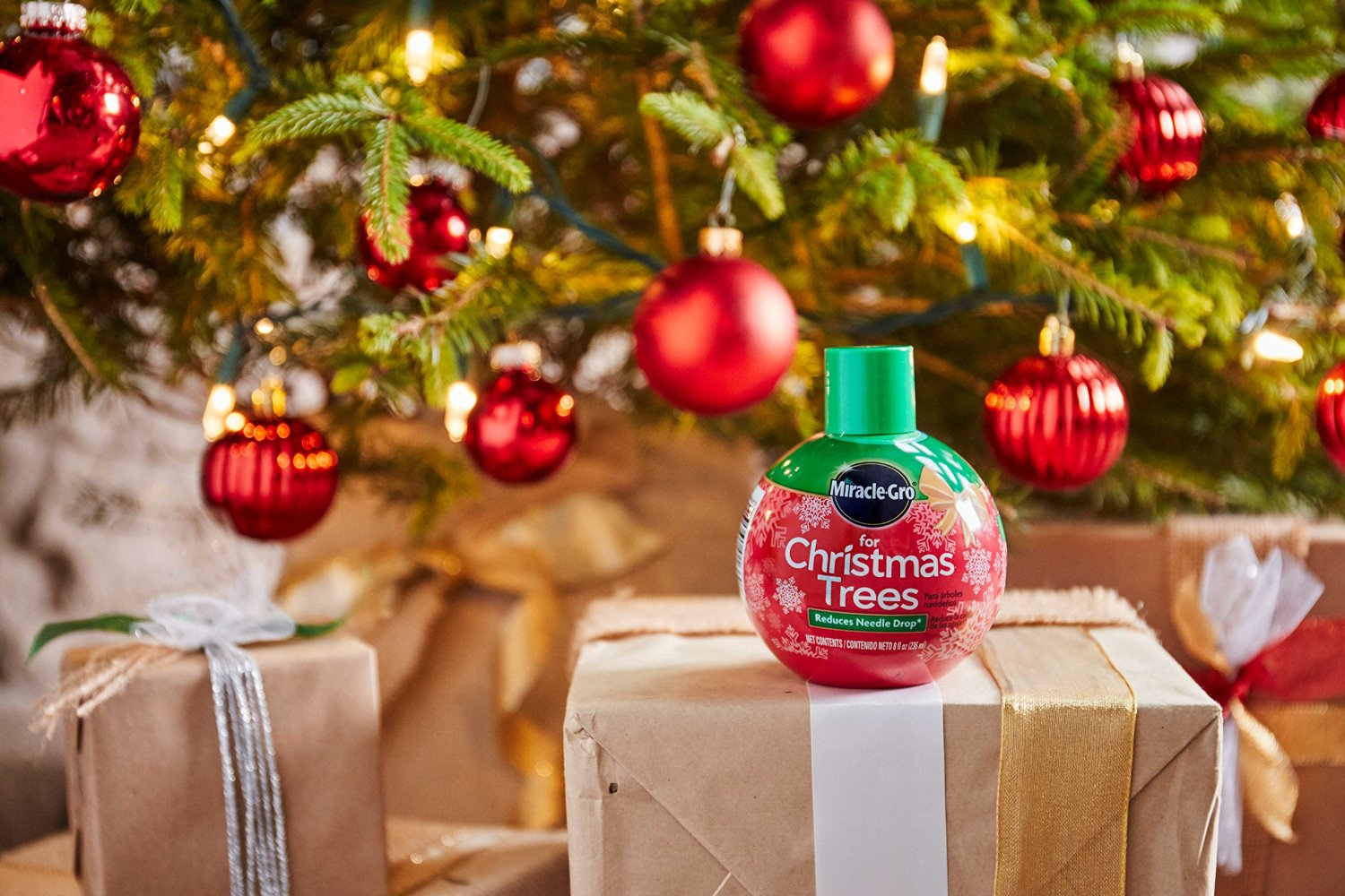 Miracle-Gro For Christmas Trees - Plant Food - Miracle-Gro