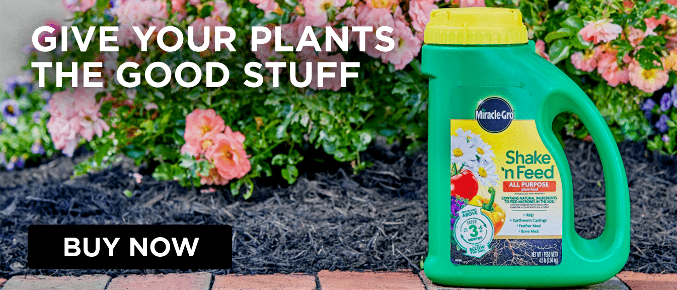 Home Gardening Tips And Landscaping Ideas | Miracle Gro