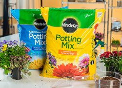 Miracle Gro Potting Mi Are Blends Of High Quality Ings That Provide The Correct Mix Air Water Solid And Nutrients So You Can Be Successful