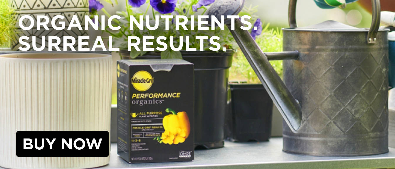 Organic nutrients. Surreal results.