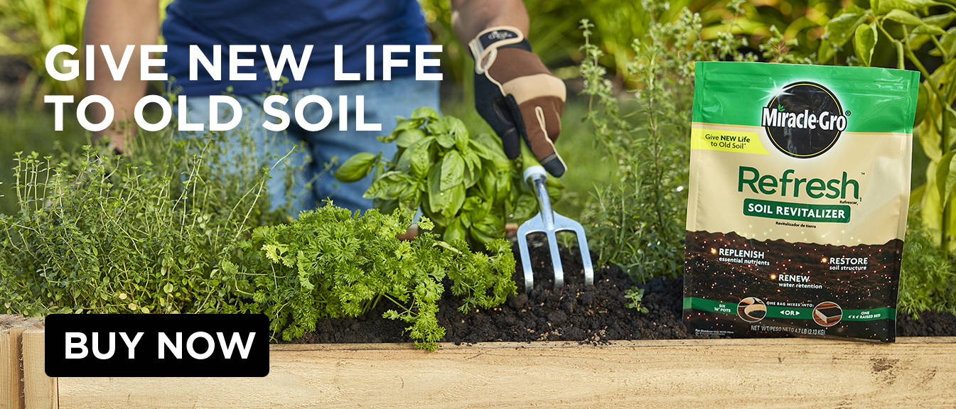 Give new life to old soil
