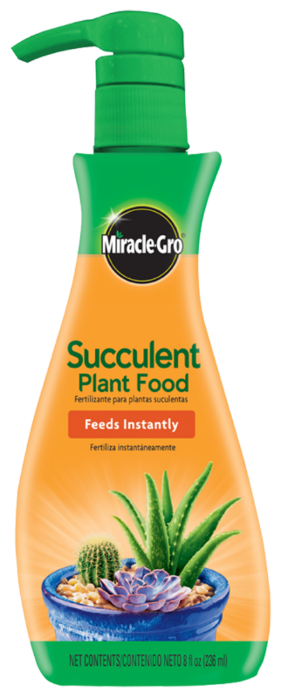 Miracle Gro Succulent Plant Food Reviews