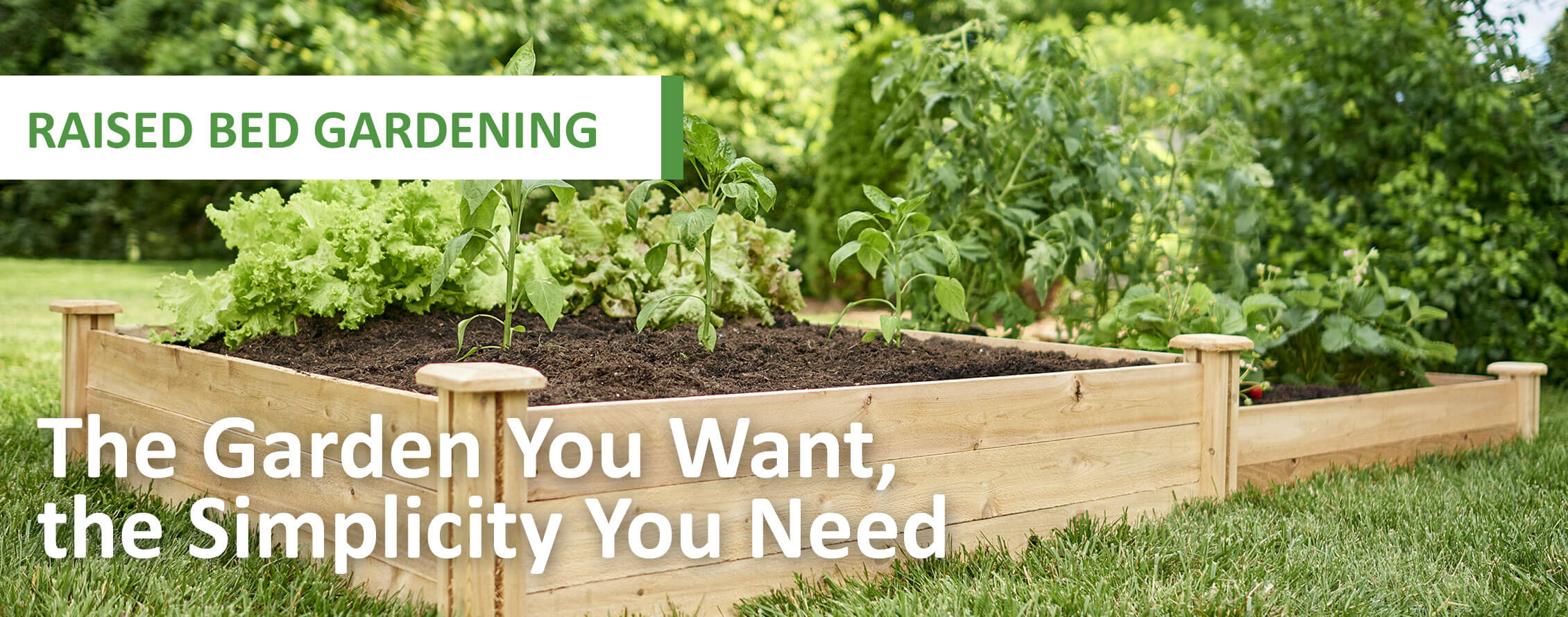 Raised Bed with The Garden you want and the Simplicity you Need.
