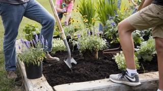 Family planting a raised bed pollinator garden.