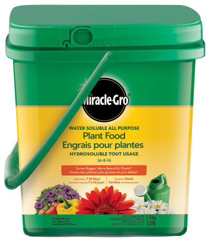 Miracle-Gro® Water Soluble All Purpose Plant Food 24-8-16