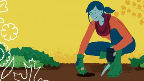 Illustration of a woman planting spring bulbs.