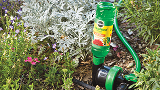 Liquid Feed being used to feed a garden.