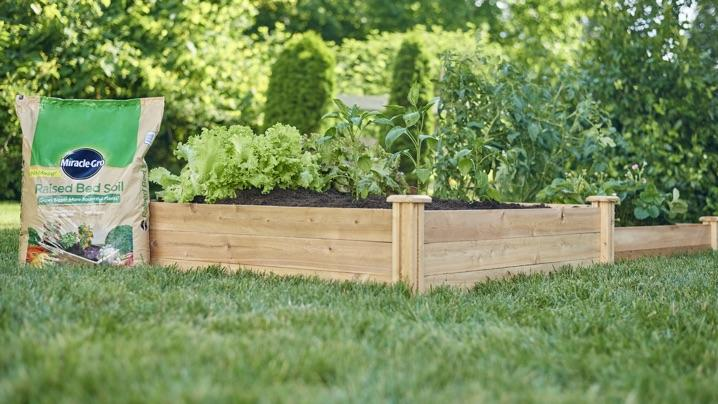 Wooden raised bed with Miracle-Gro® Raised Bed Soil.