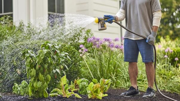 man watering flower with Miracle-Gro Performance Organics Garden Feeder