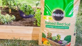 How to Build a Simple Raised Bed: bag of Miracle-Gro® Raised Bed Soil by wooden raised bed