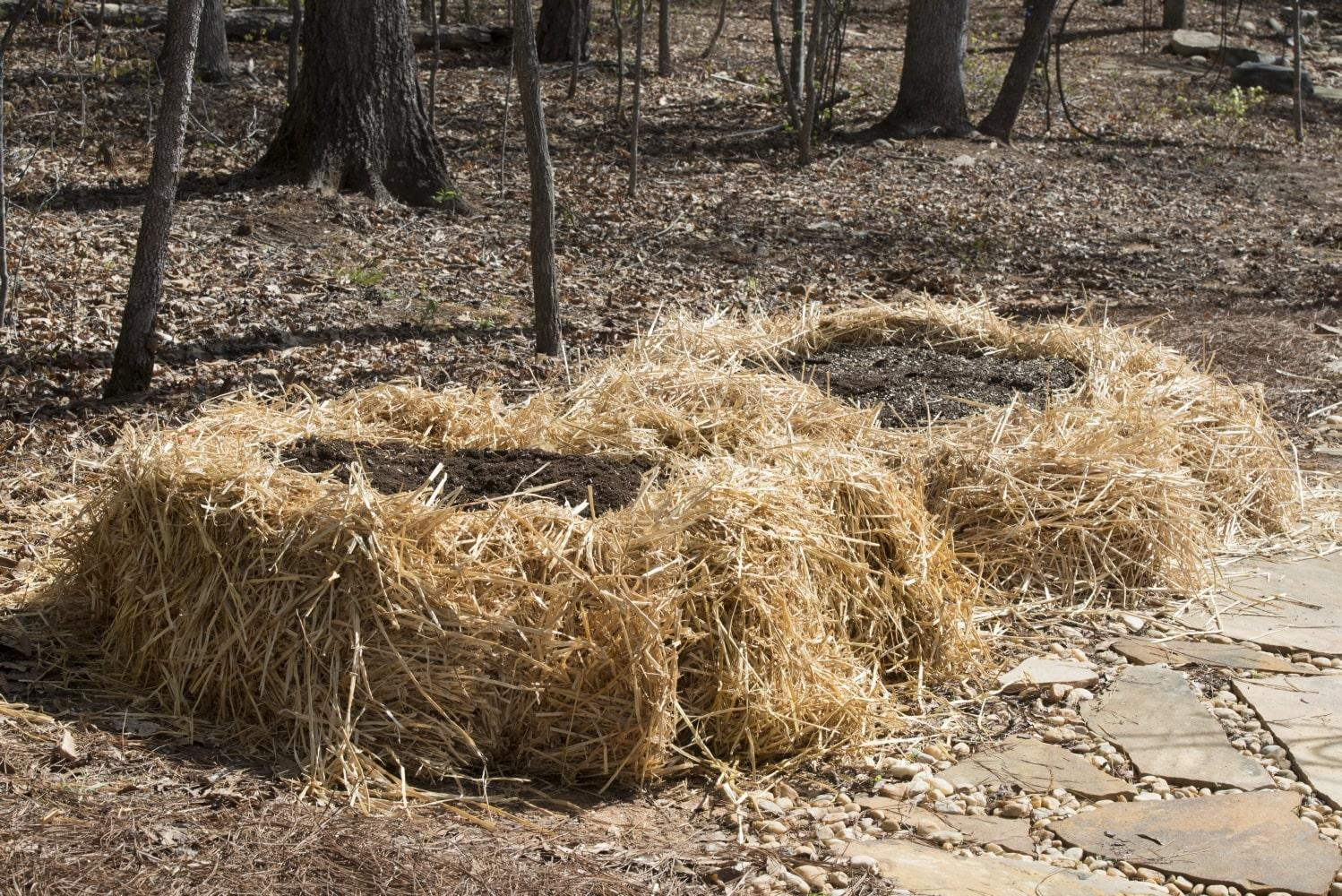 Straw bales form the frame of two circular raised bed gardens, each filled with soil and ready for plants.