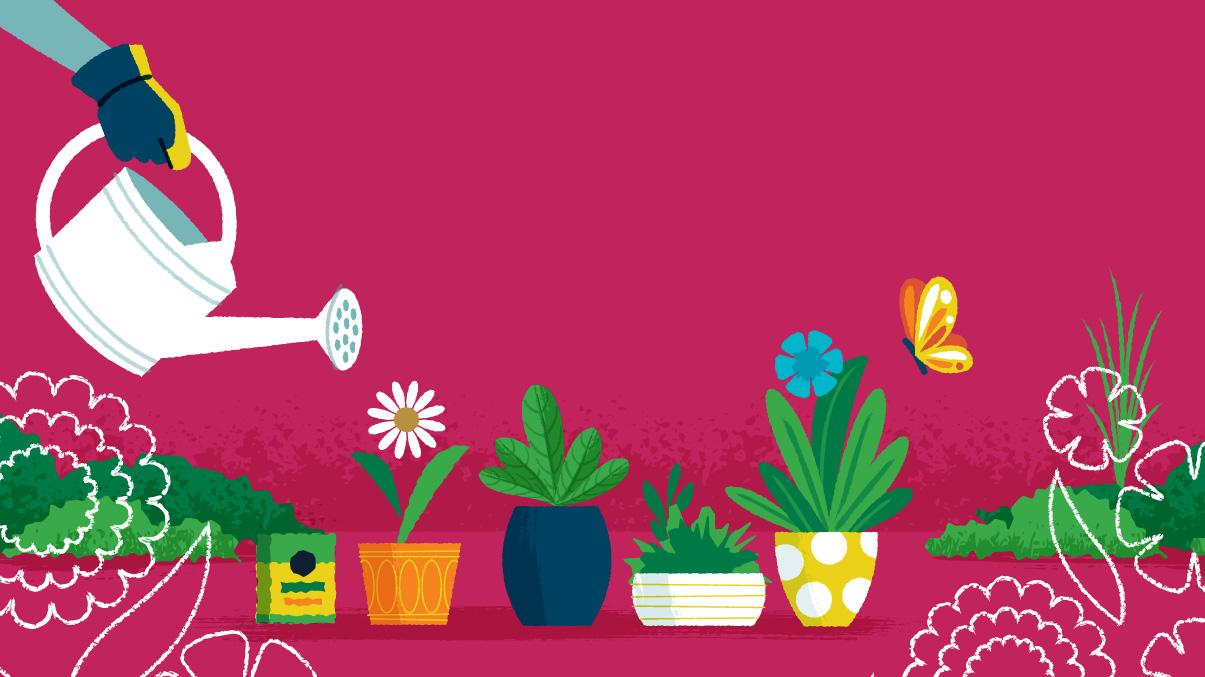 Miraculous Gardening: Woman feeding potted plants with watering can and Miracle-Gro plant food