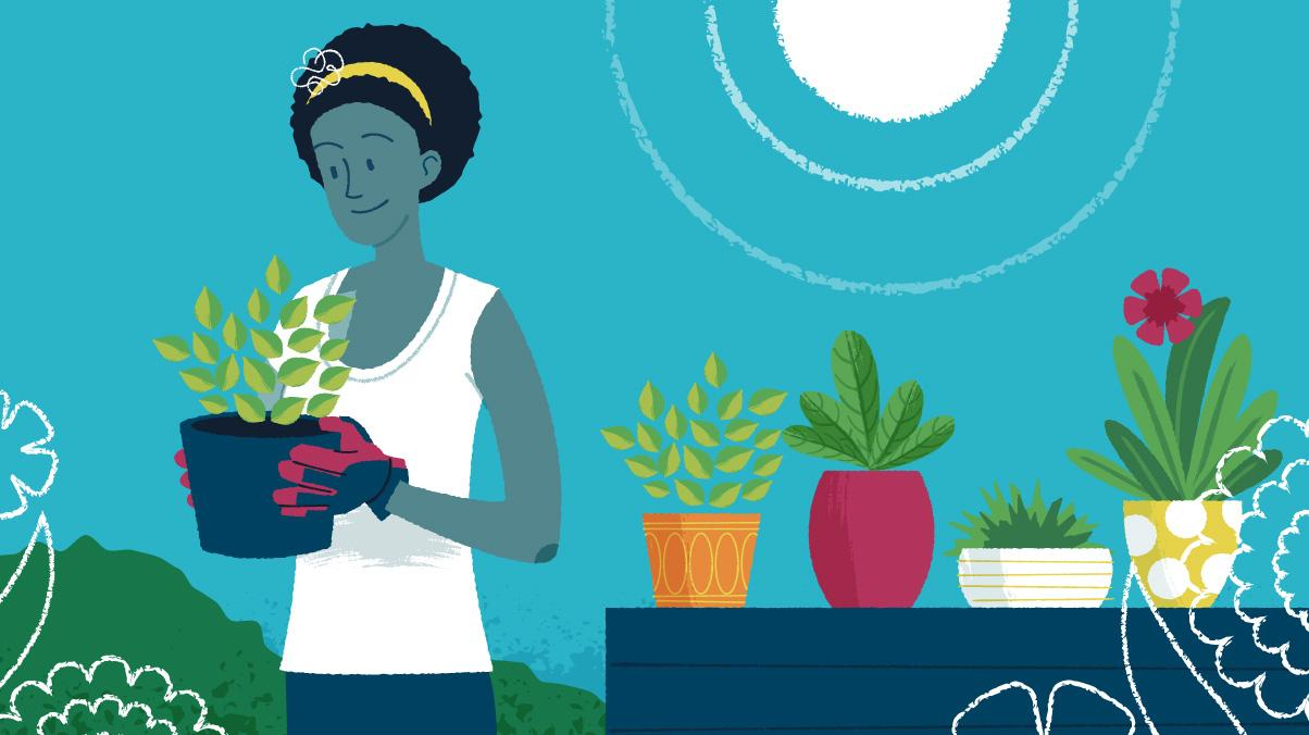 Illustration of a woman holding a basil potted herb plant.