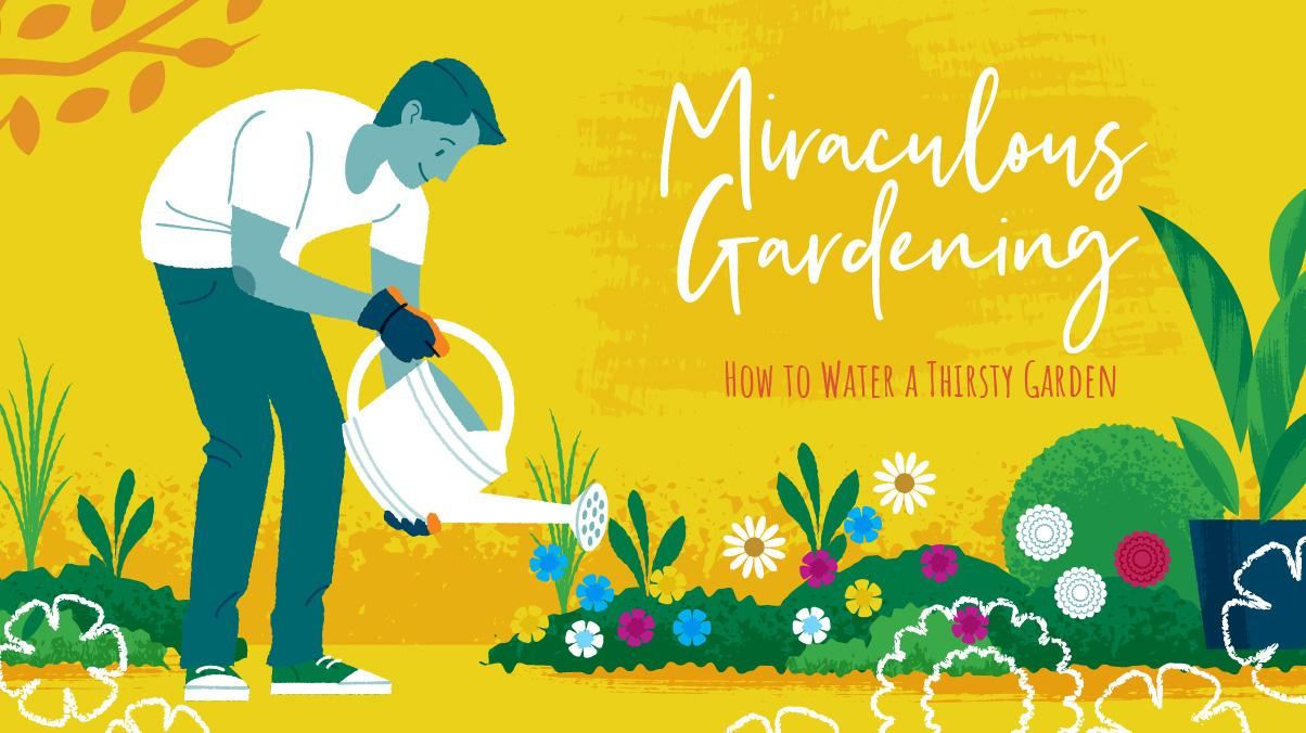 Miraculous Gardening: How to Water a Thirst Garden - Illustration of a man watering his garden with a water can by hand.