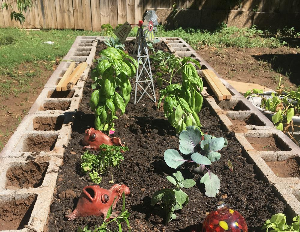 A rectangular raised bed made from concrete blocks contains plants and garden accessories.