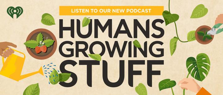 Humans growing stuff podcast - Illustration.