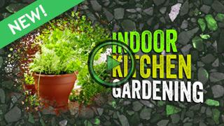Indoor gardening ideas miracle gro for Indoor gardening trends