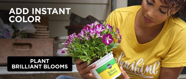 A woman holds a container of Miracle-Gro Brilliant Blooms petunias.
