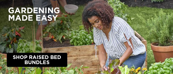 A woman tends to her raised bed garden.