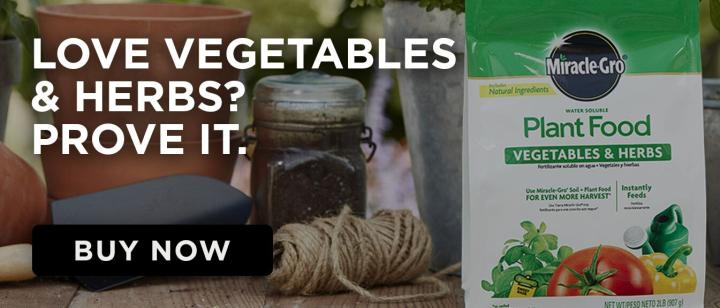Miracle Gro Product with caption- Love Vegetables and Herbs? Prove it.