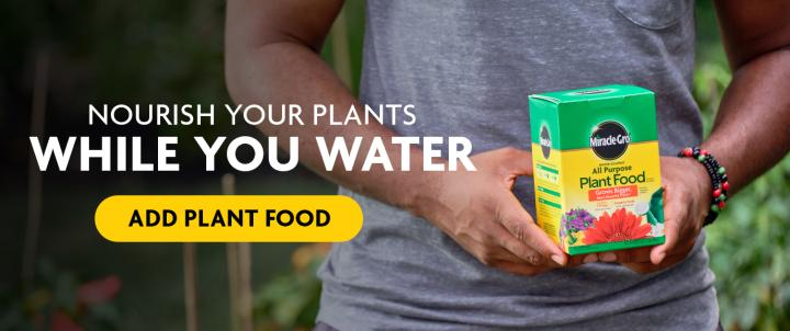 A box of Miracle-Gro Water Soluble All Purpose Plant Food