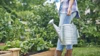 Woman with watering can looking at her garden.