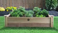 Butterfly Herb Garden Raised Bed