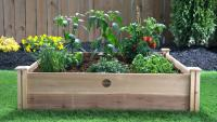 Pizza Garden Raised Bed