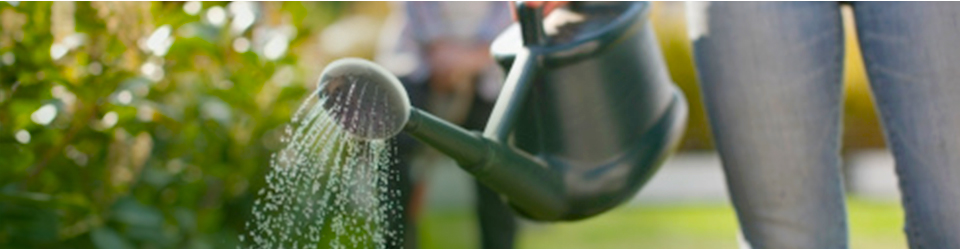water friendly gardening category header