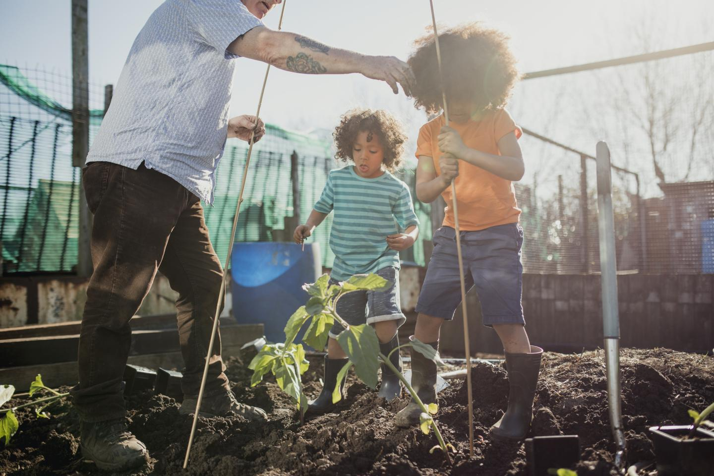 A Family Gardening Together