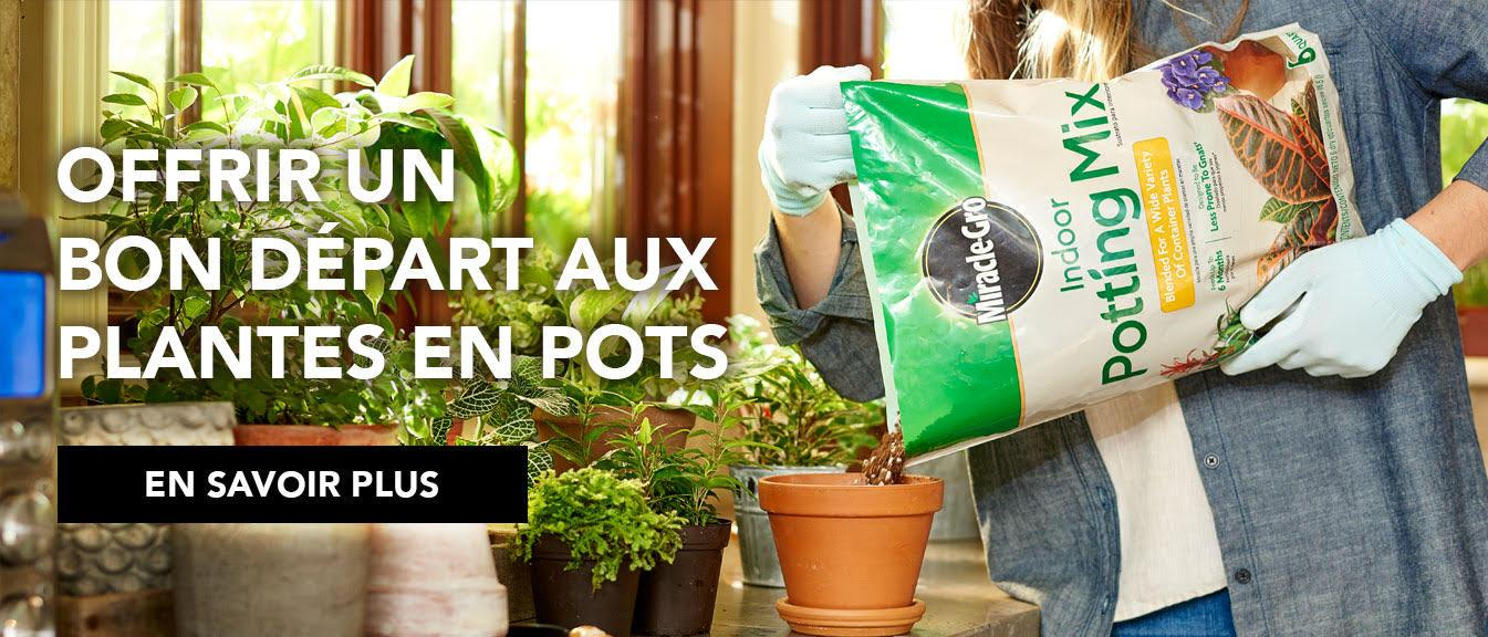 Person pouring MiracleGro indoor potting mix into pot.