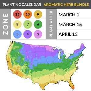 When Is It Safe to Plant?