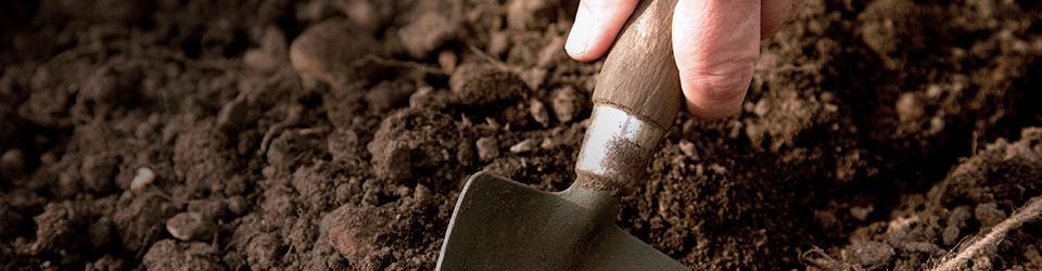 Person digging with small shovel in soil