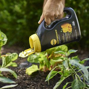 FEED YOUR IN-GROUND FLOWERS, VEGETABLES AND HERBS