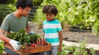 What to Plant in a Raised Bed: dad and son with harvest basket