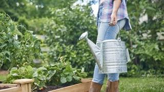 How to Care for Plants in a Raised Bed: woman with watering can