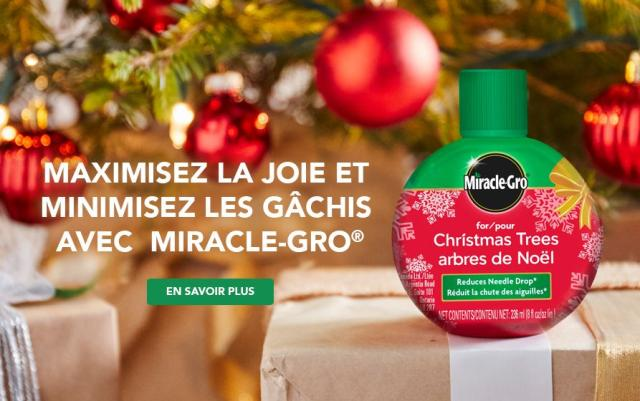 Miracle Gro for christmas trees with caption- Maximize Merry, Minimize mess with Miracle-Gro