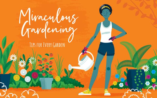 An illlustration of a woman watering her plants, with a bright orange background.