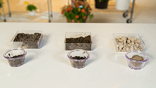 Soil examples