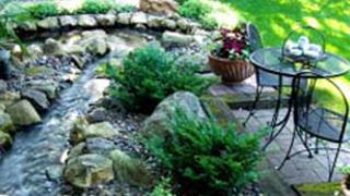 Gardening Options Near Streams & Ditches