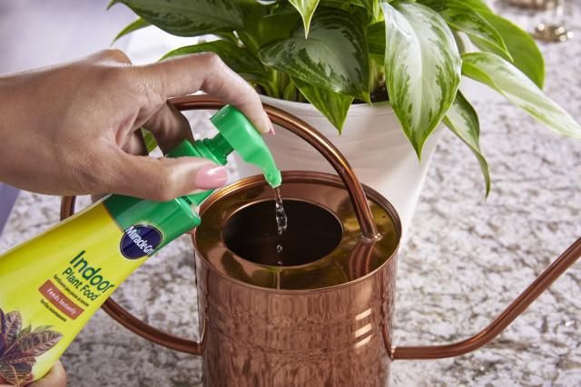 Person squirting Miracle-Gro® Indoor Plant Food into a watering can.