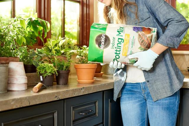 pouring Miracle-Gro® Indoor Potting Mix