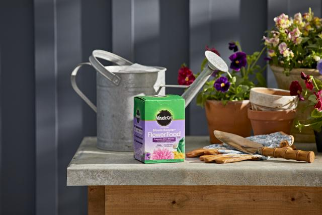 Miracle-Gro® Water Soluble Bloom Booster® Flower Food package next to watering can