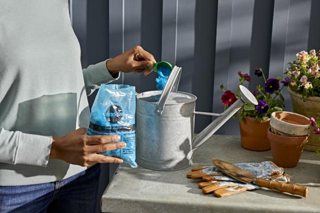 Miracle-Gro® Water Soluble Bloom Booster® Flower Food being poured into watering can